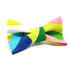 Cat Bow · Rainbow