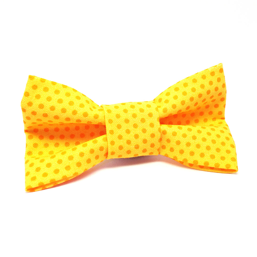 Cat Bow · Dotty · Yellow