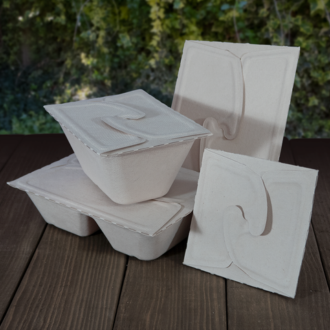 Bagasse Meal Boxes