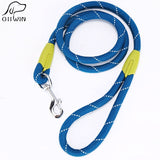 Pet Leash Products for Small Large Pets