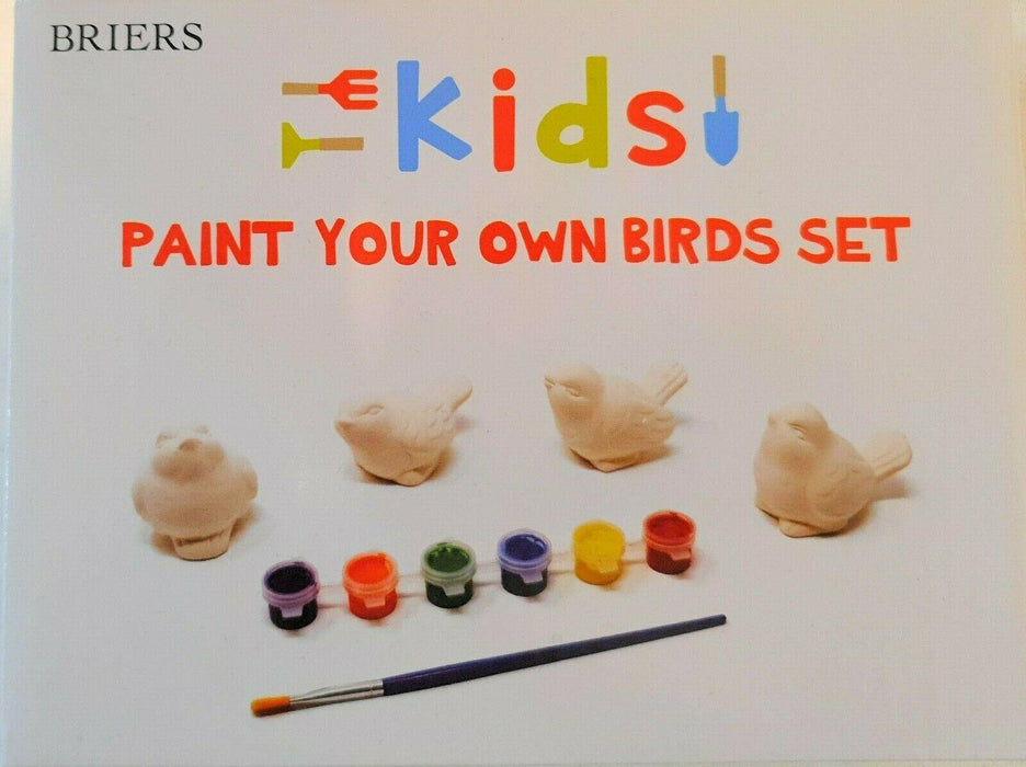 Paint Your Own Birds Set - 4 x Ceramic Birds With 6 x Non Toxic Paints & Brush