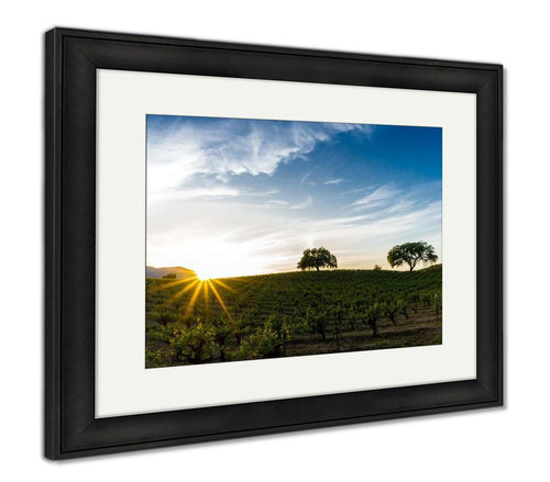 Framed Print, Sun Flare At Sunset Over A Sonoma California Vineyard Sunset In California Wine - FriendsWhoDrink