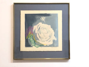 "Susan Singleton ""White Rose"""