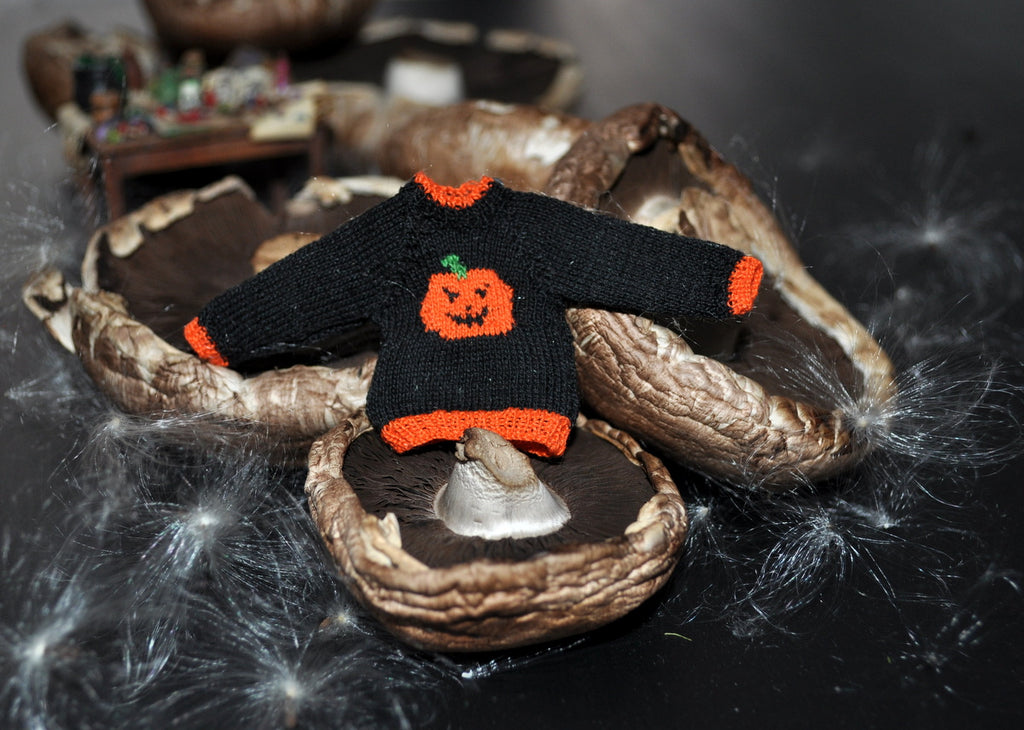 Pumpkin Jumper by Jenny Tomkins