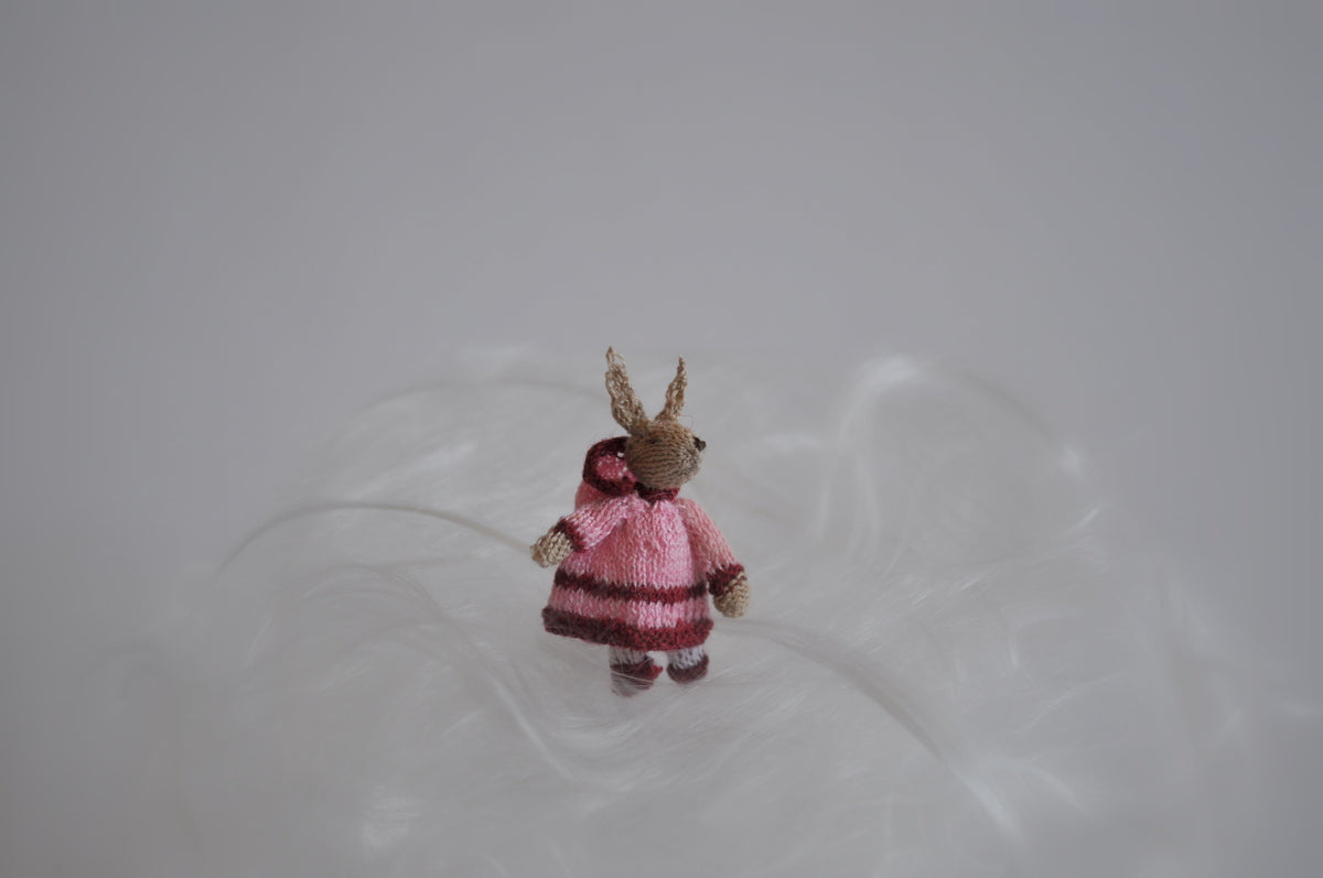 Little Fashion Bunny Girl Dressed in a Pink & Maroon Dress & Hood by Jenny Tomkins