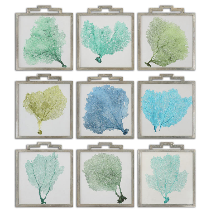 Sea Fans Framed Art S/9