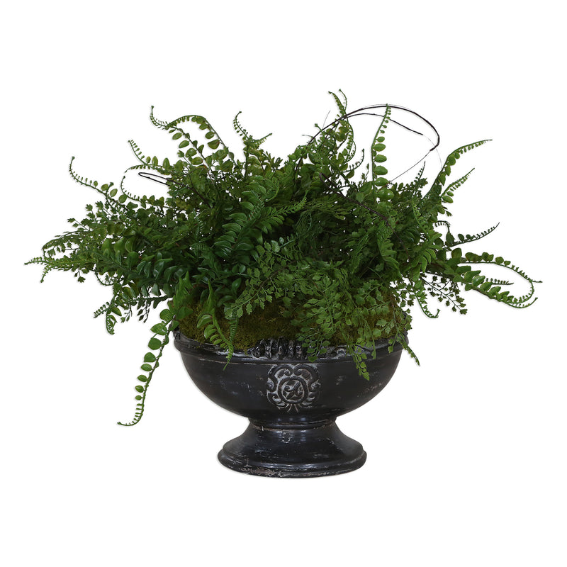 Amberly Fern Centerpiece