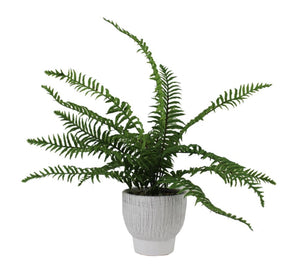 ARTIFICIAL FERN IN STRIPED POT