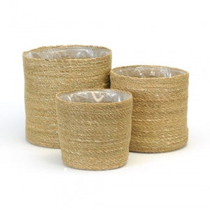 SEAGRASS PLANT BASKETS - SET OF 3
