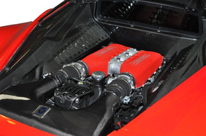 Ferrari 458 Carbon Fiber Complete Engine Bay
