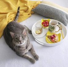 Load image into Gallery viewer, ViviPet丨Ceramic Cat Bowl & Plate Combo - ViviPetOfficial_EU