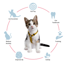 Load image into Gallery viewer, ViviCat Selected | Keep Spinning 360° Cat Toy