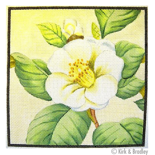KB 050 - Single Camellia