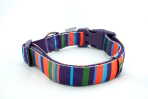 dog collar adjustable