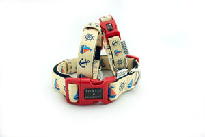 dog collar webbing