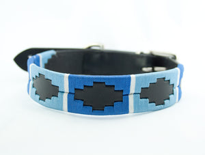 Leather 'GAUCHO-POLO' Style Dog Collar Blues