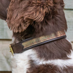 ' The Balmoral'  Tweed & leather Dog Collar