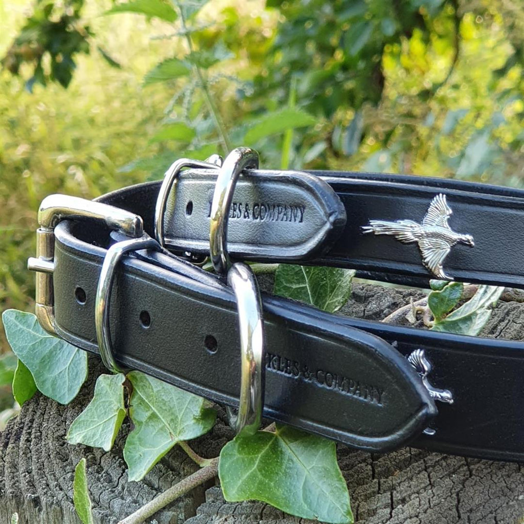 'The Blenheim' Silver Pheasants & Black Leather Dog Collar