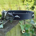 'The Tay' Silver Salmon & Black Leather Dog Collar