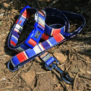 Printed webbing and soft Neoprene Collar DECKCHAIR