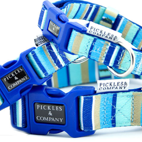 dog collar neoprene webbing blue stripes