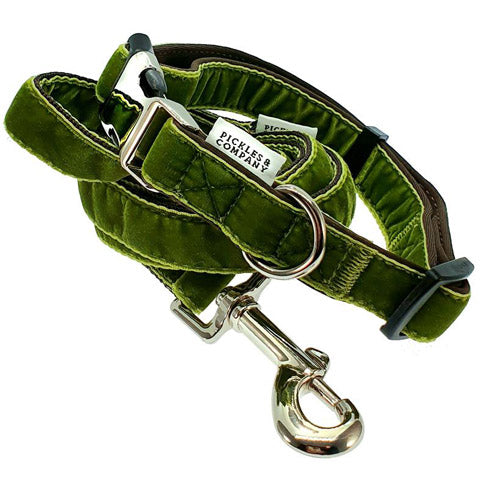 dog collar velvet lime green