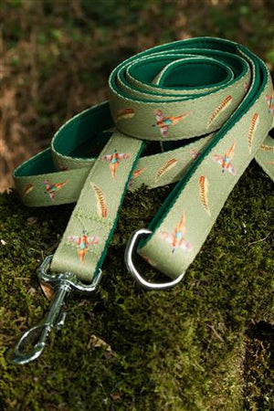 dog lead green pheasant
