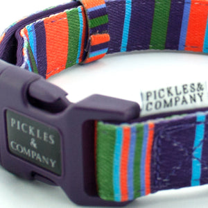 Printed webbing and soft Neoprene Collar PURPLE STRIPES