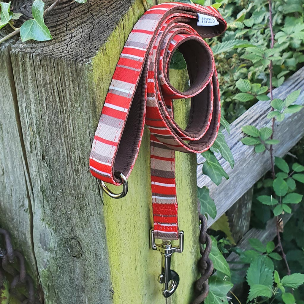 Printed Webbing and soft Neoprene Dog Lead RED STRIPES