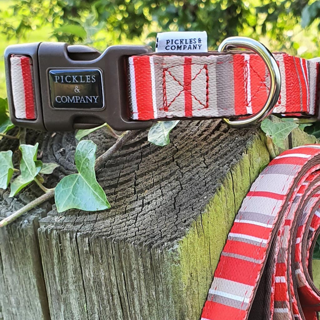 Printed Webbing and soft Neoprene Dog Collar RED STRIPES