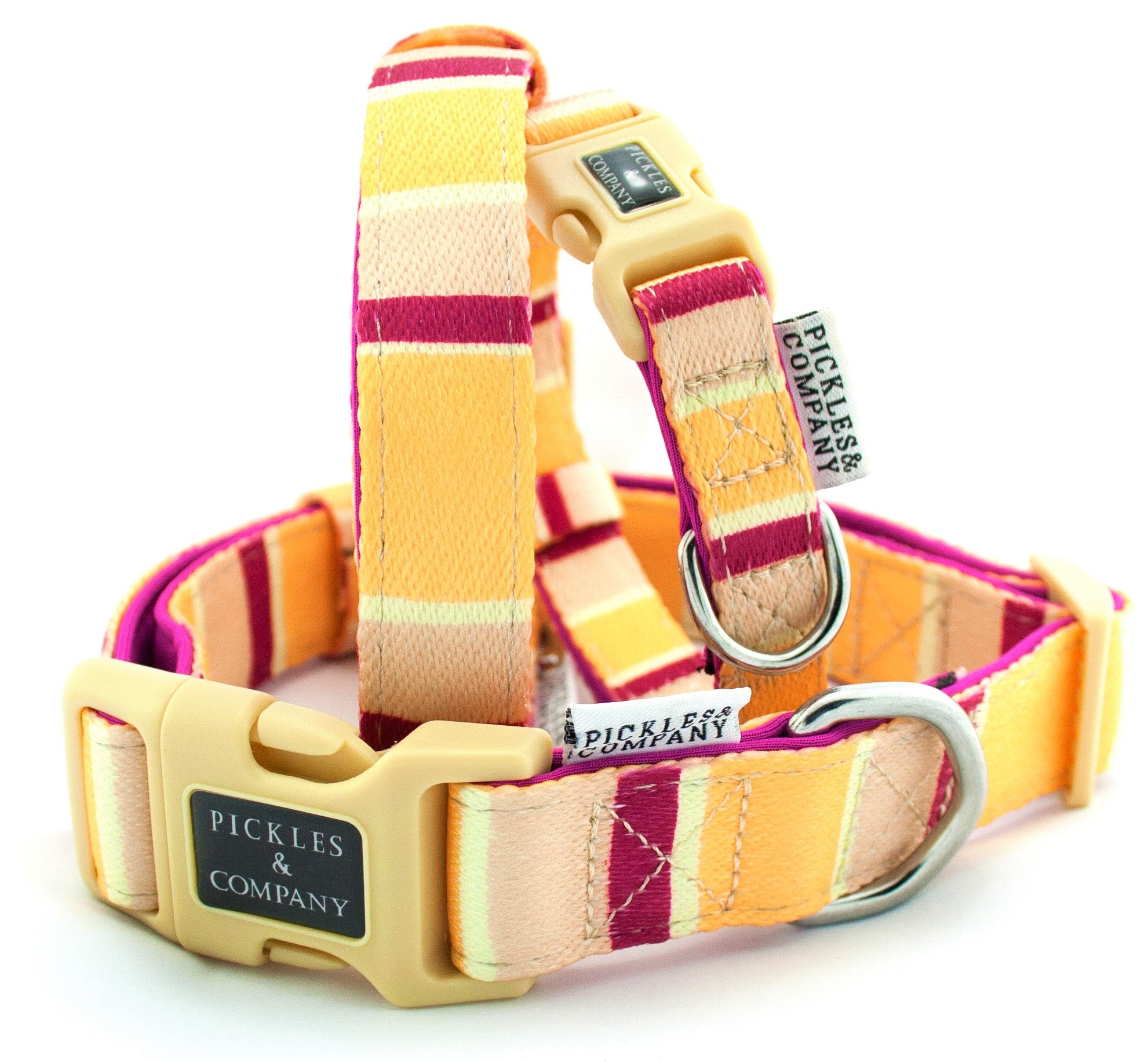 'RHUBARB & CUSTARD' Printed Webbing and soft Neoprene Dog Collar