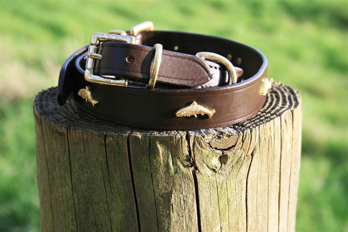 'The Tay' Golden Salmon & Leather Dog Collar