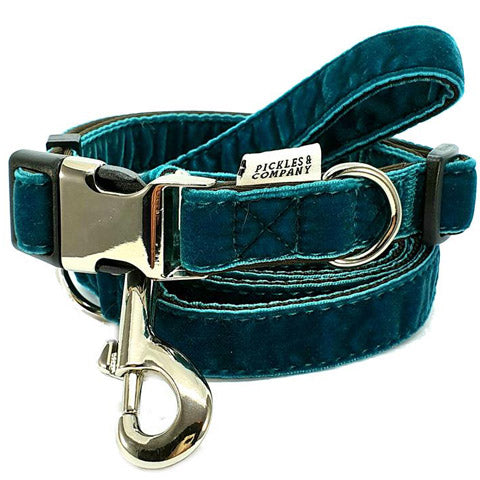 dog collar velvet blue