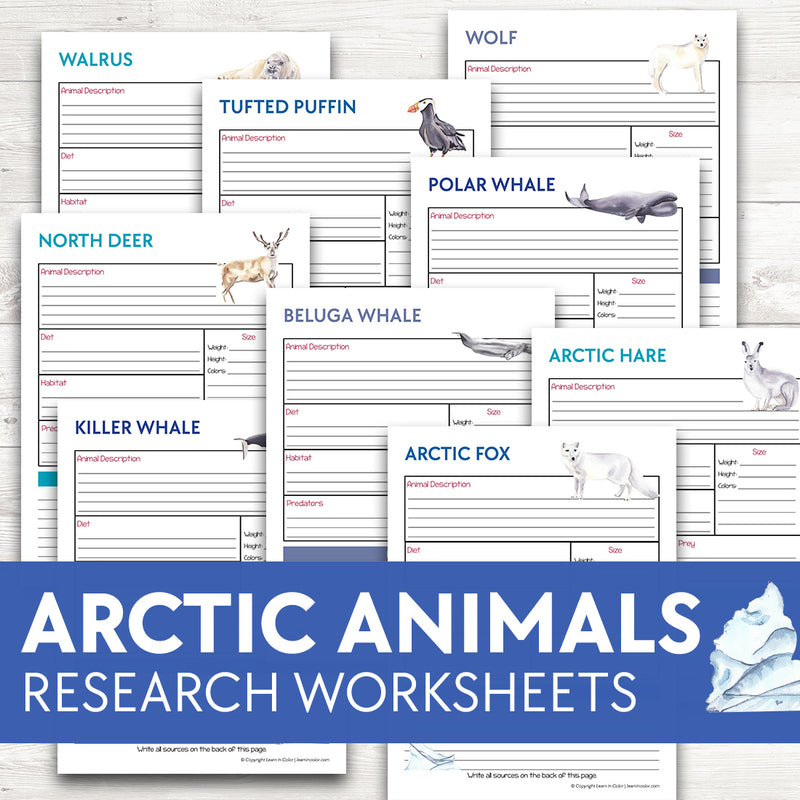 Arctic Animals Research Worksheets
