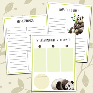 Panda Notebooking Pages <h5><b>Grades:</b> 2-5 </h5>