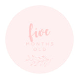 Milestone Cards | Pink | Digital Download
