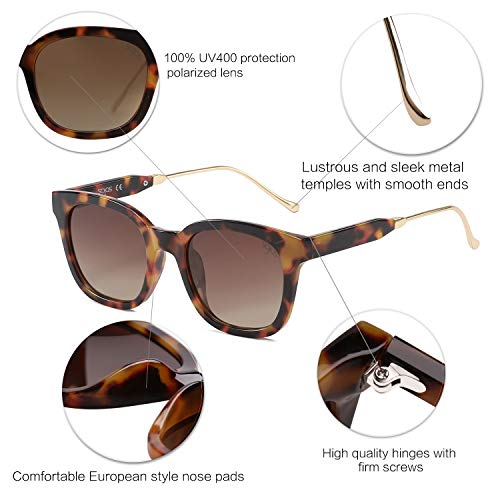 Tortoise Frame & Brown Polarized Lens Sunglasses