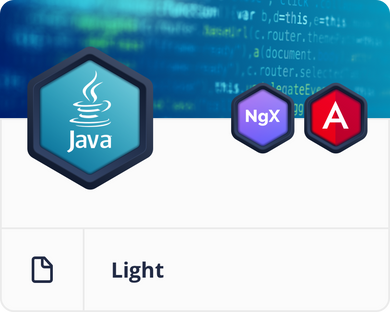 Java/Spring Light Starter Bundle