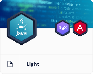 Java/Spring Light Bundle