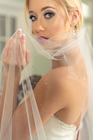 Fiona  Beaded cluster chapel veil silver rolled edge