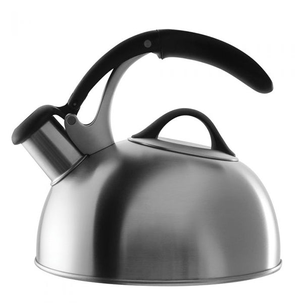 Pick Me Up Tea Kettle