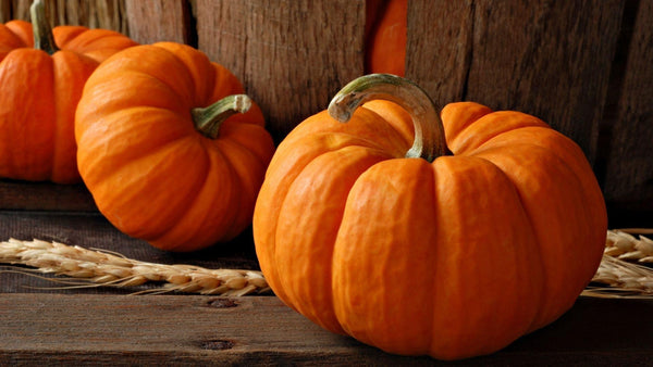 Pumpkin Benefits for skin and coupons