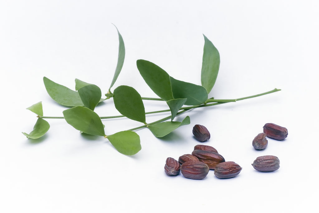 tea tree jojoba