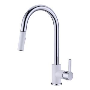 NOAH Two Tone Kitchen Faucet