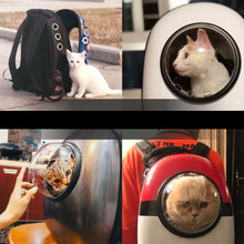 Load image into Gallery viewer, Pet Capsule