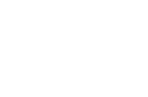 Bogren Digital Logo