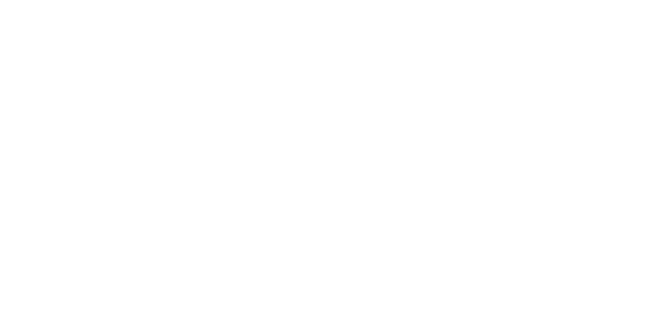 Slate Digital Logo