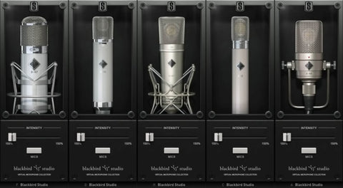 Slate Digital Blackbird Mics Expansion