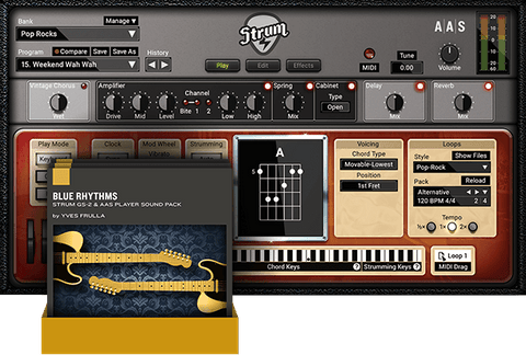 AAS Strum GS-2 + Packs Virtual Instruments PluginFox