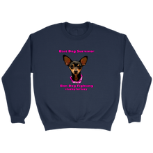 Load image into Gallery viewer, Unisex Crew-Neck Sweatshirt (additional colors availalbe)